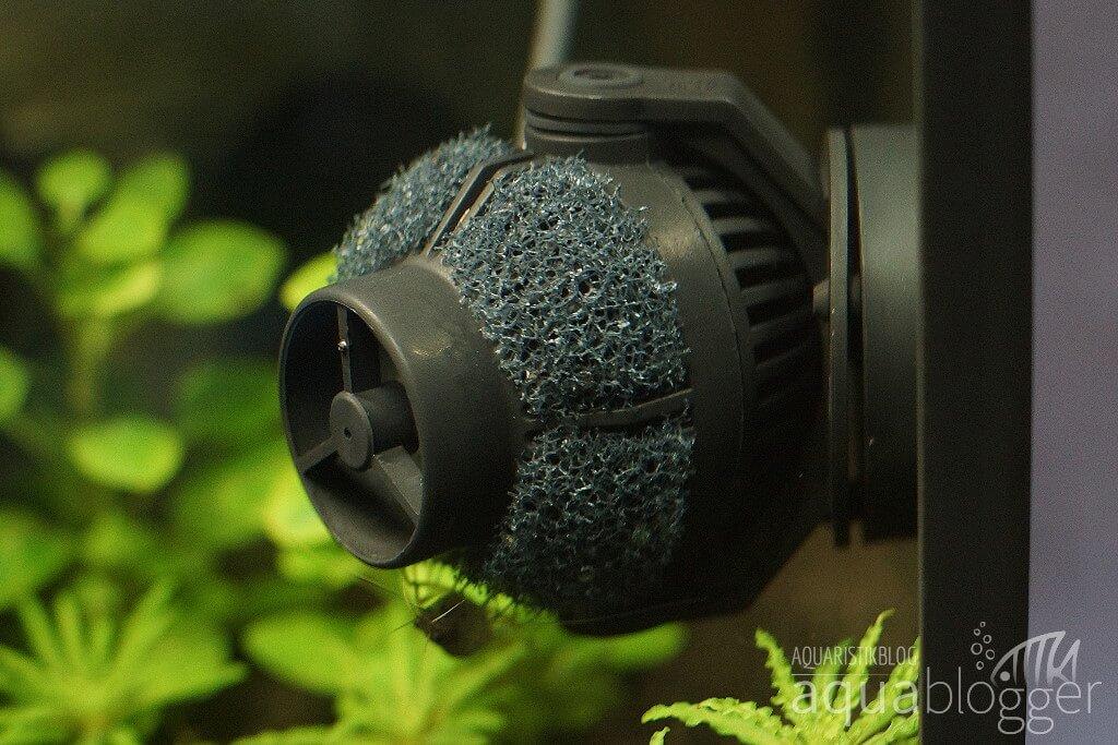 EcoDrift 4.2 mit selbstgemachtem Ansaugschutz